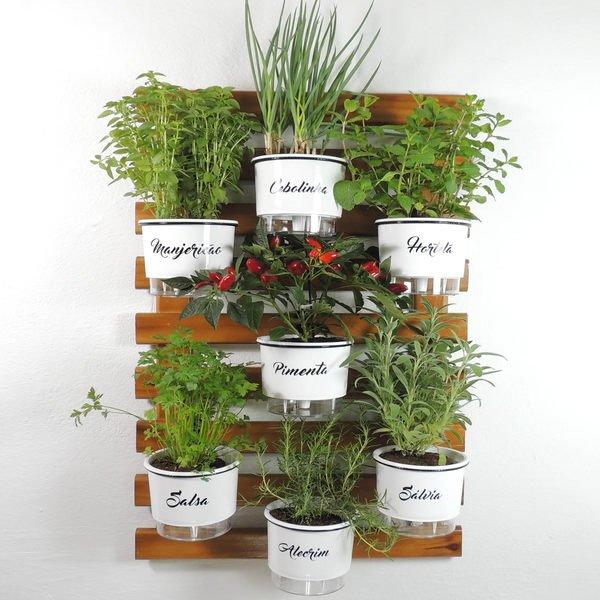 Como ter uma Horta em Ambientes Pequenos?